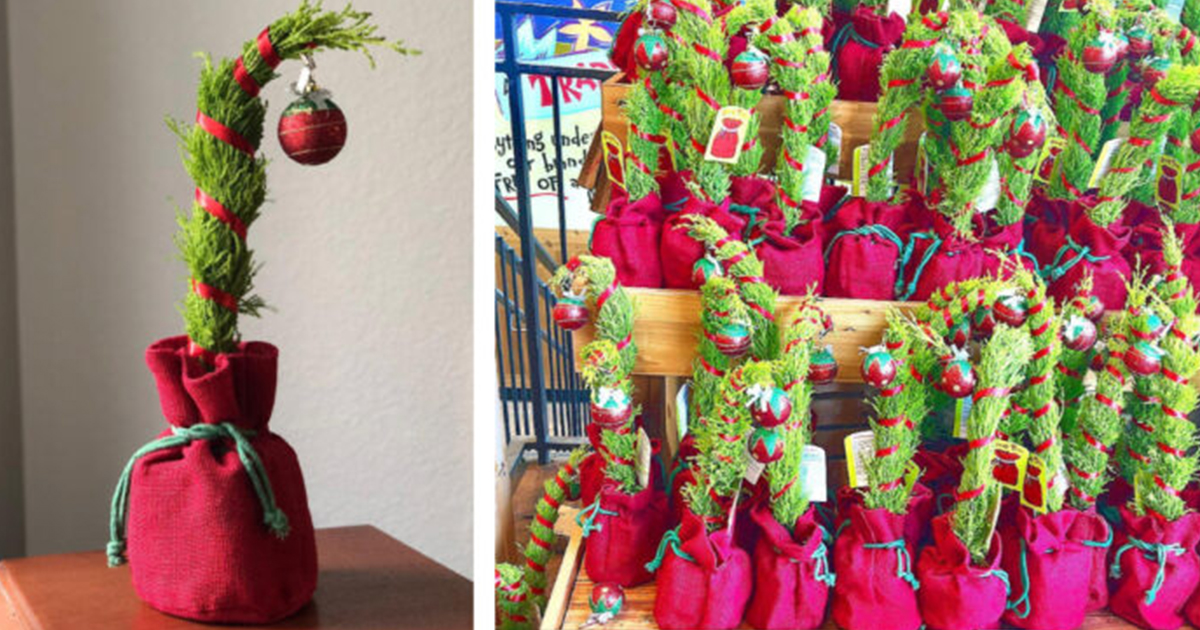 Trader Joe S Is Selling A Mini Grinch Inspired Christmas Tree 12 Tomatoes