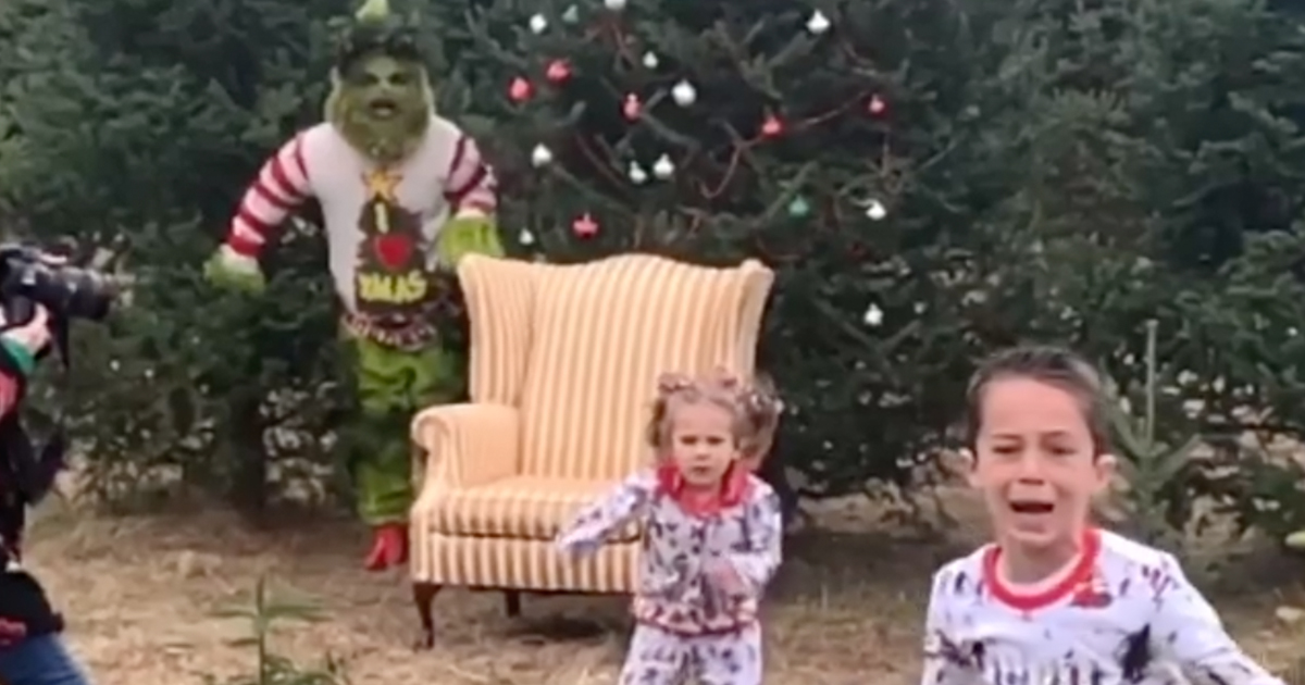 Grinch Hiding In The Trees Terrifies Children Taking Their Annual Christmas Photos 12 Tomatoes