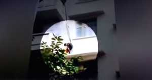 grandmother dangles grandchild off balcony to save cat