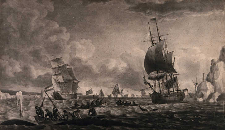 historical depiction of whaling ships in the 1800s