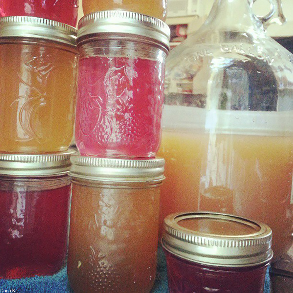 apple juice and violet jellies being made