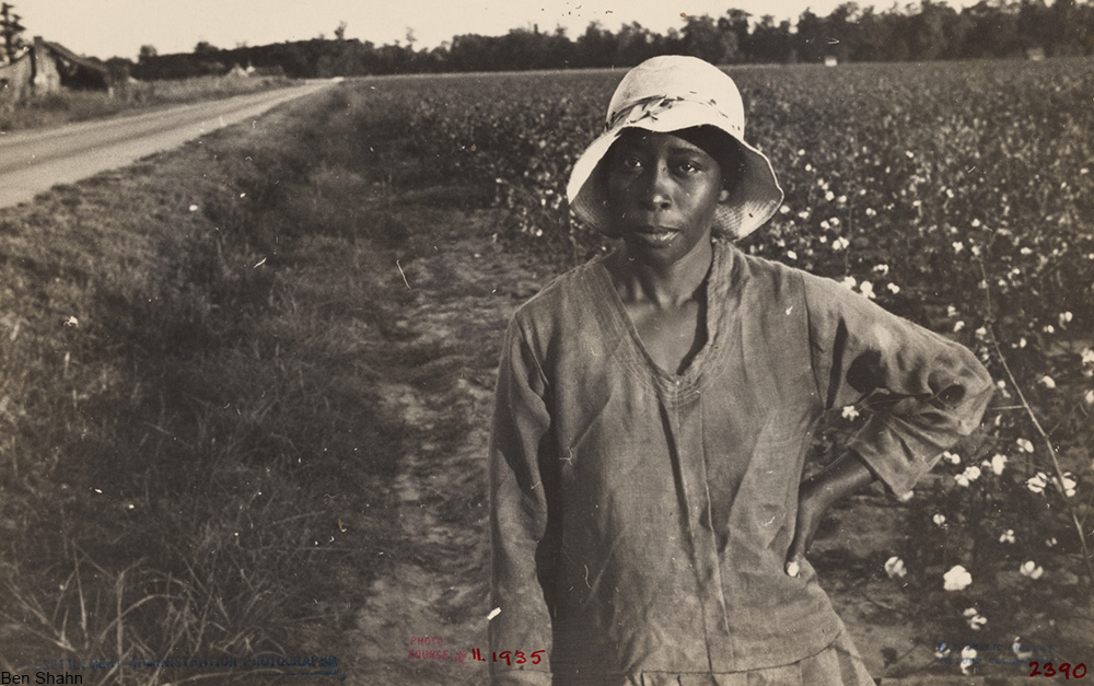woman employed at picking cotton, wearing a cloche hat, 1930s