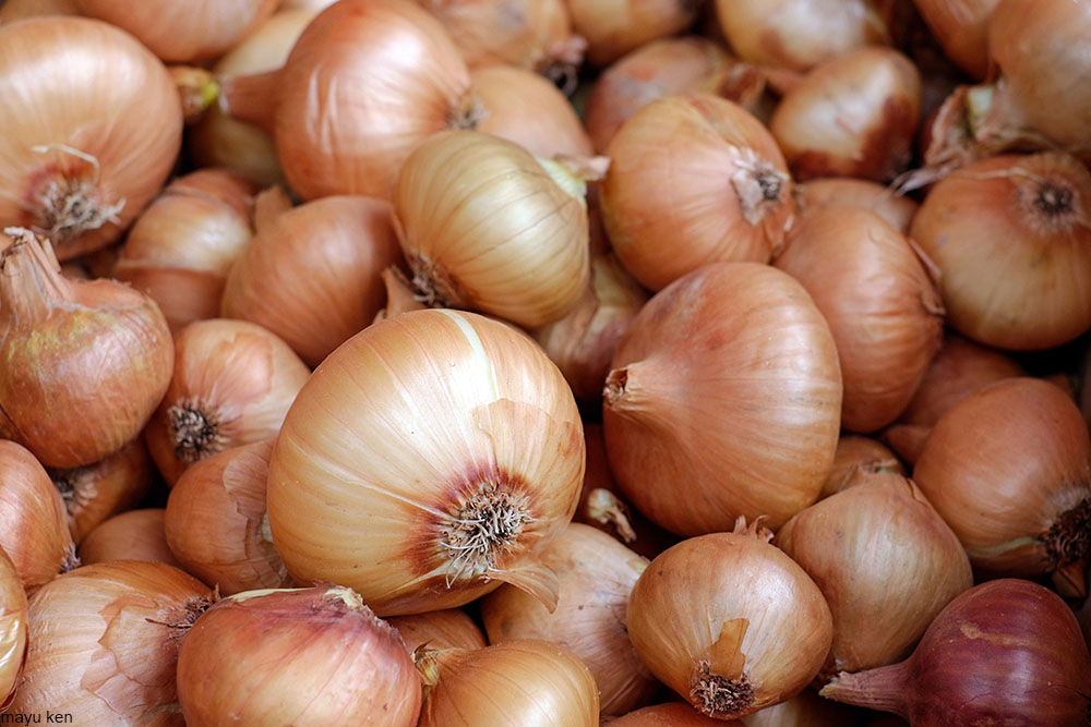 pile of onions in their skins