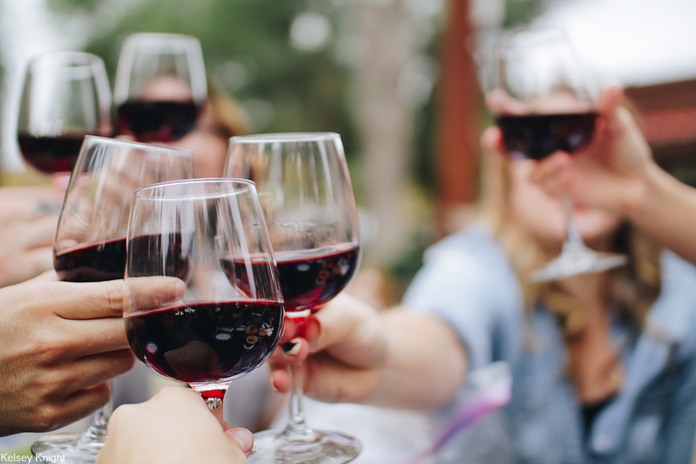group of people toasting wine glasses