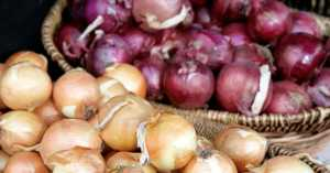 red and yellow onions on display at a store side by side