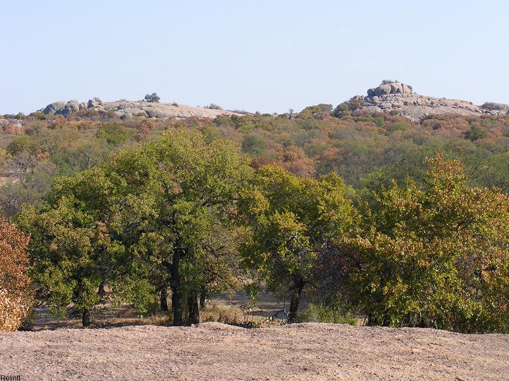 Central Texas landscape