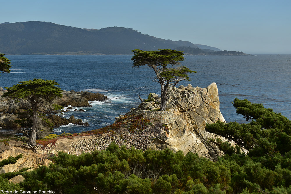 Carmel-by-the-Sea