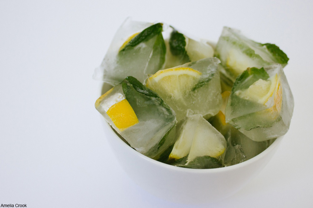 lemon wedge ice cubes