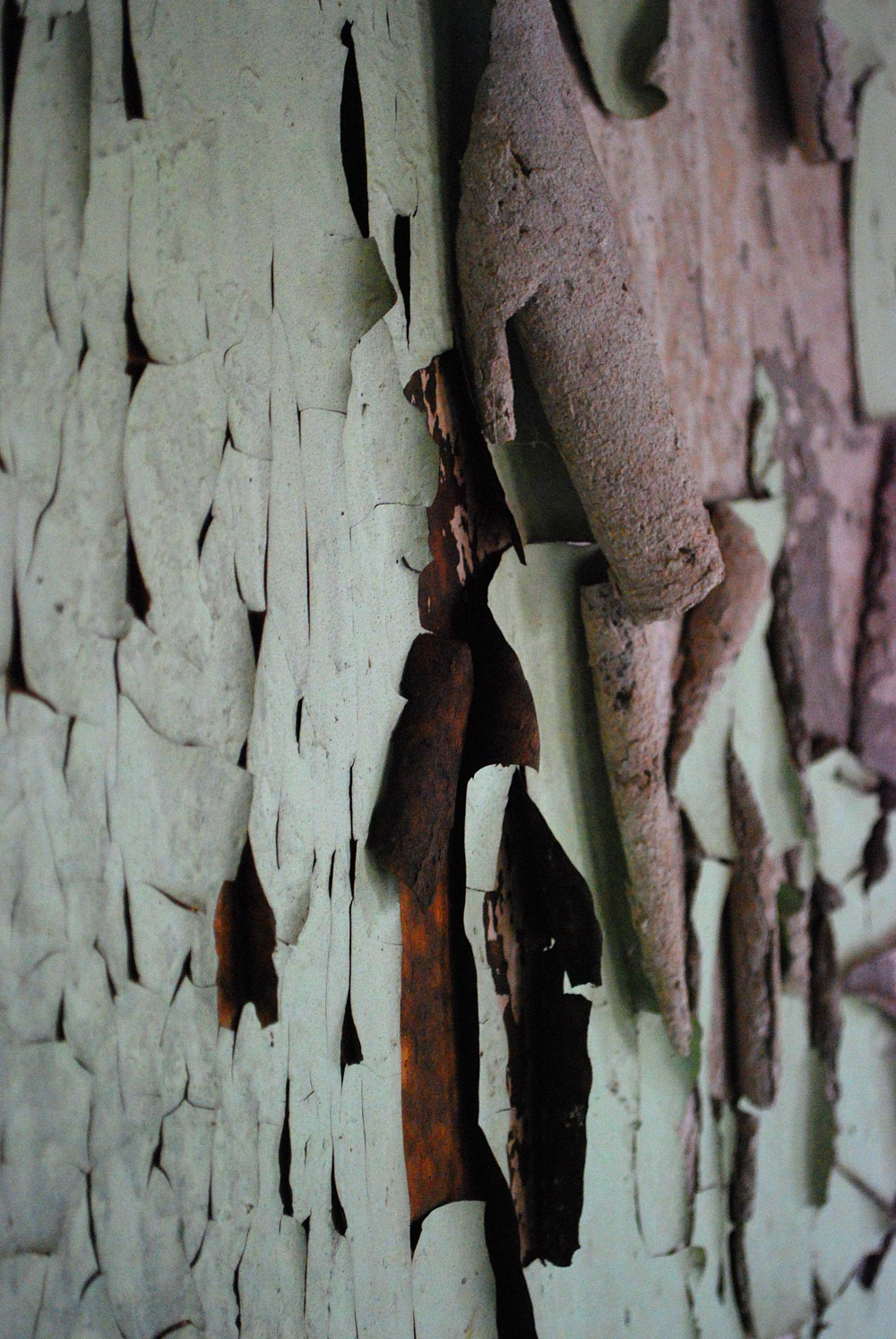 layers of peeling paint