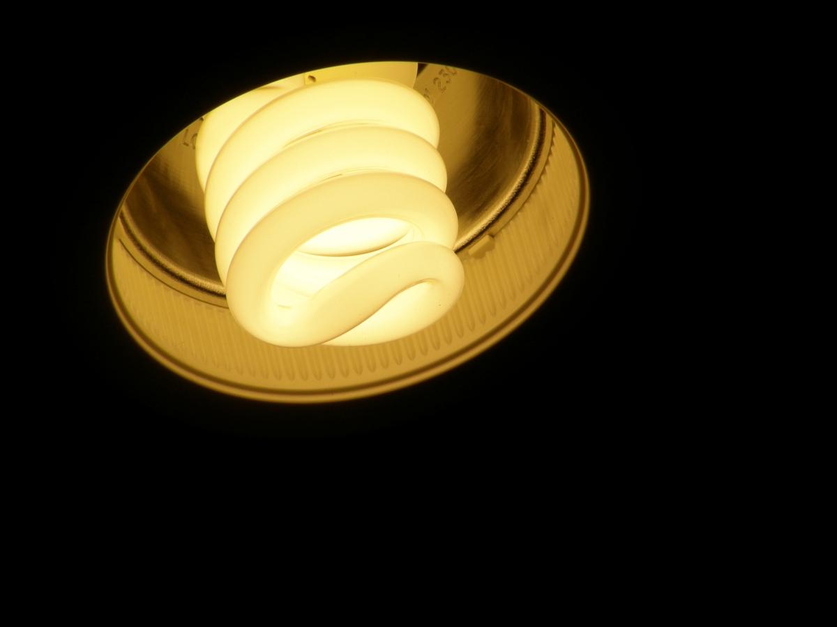 light bulb in a socket