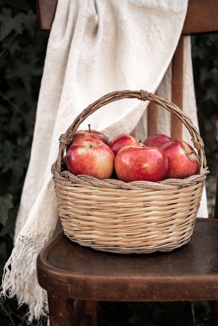 basket of apples on a chair