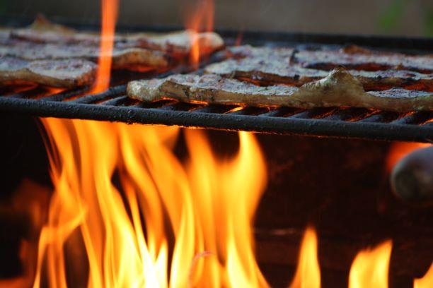 Llama Barbecued