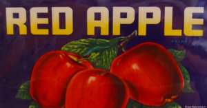 Vintage Apple Fruit Crate Label