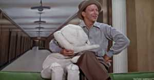 Donald O'Connor in Singing in the Rain.