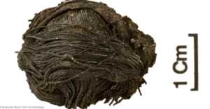 3,000-year-old ball of thread