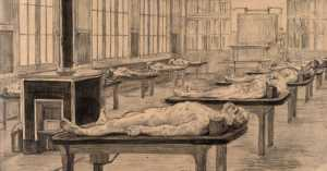 drawing of cadavers laid out for medical use, 1800s