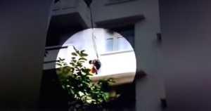 grandmother dangles grandchild off balcony to save cat