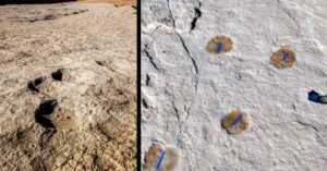 Alathar paleolake deposits and footprints found there