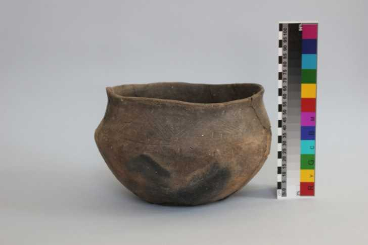 pottery vessel that once contained animal broth found in a 5th century Czech grave