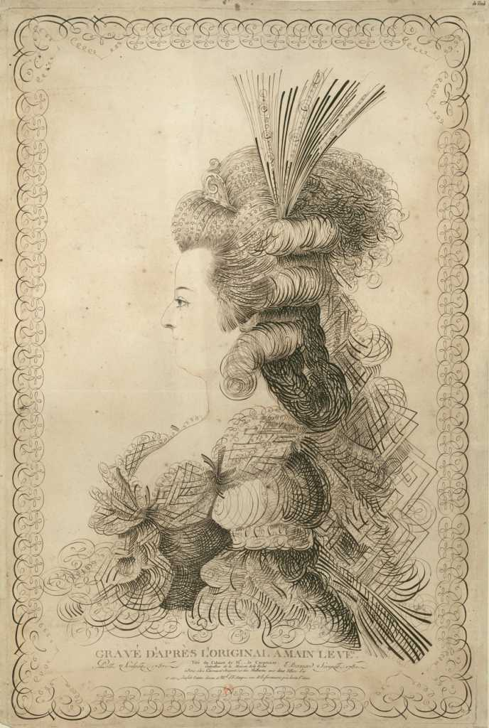 illustrayion of one of Marie Antoinette's elaborate