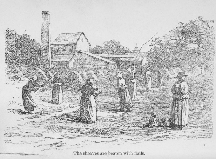 20th century depiction of enslaved women processing rice harvest