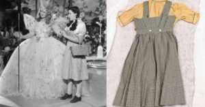 Wizard of Oz Dorothy dress feat img 3