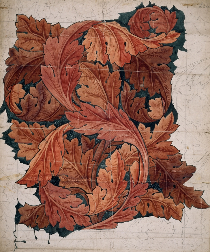 early sketch of Willam Morris Acanthuns Leaf design