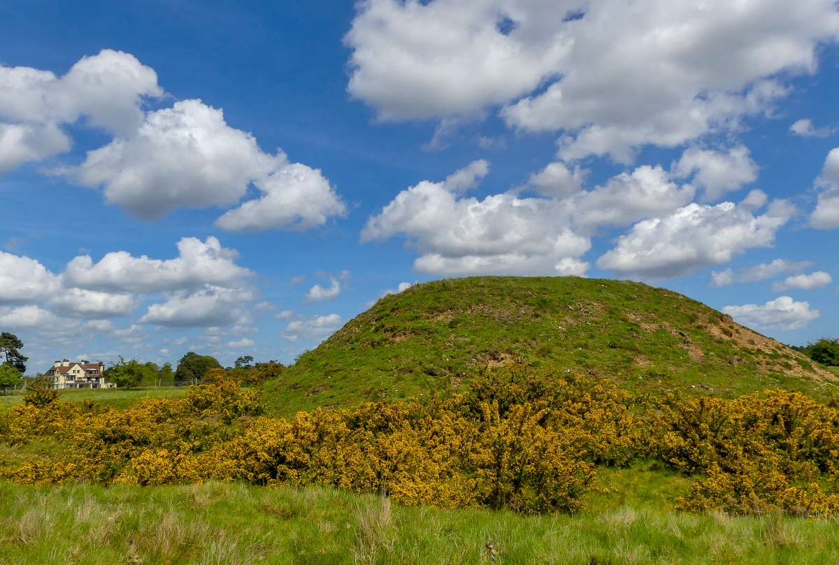 Sutton Hoo on a sunny day