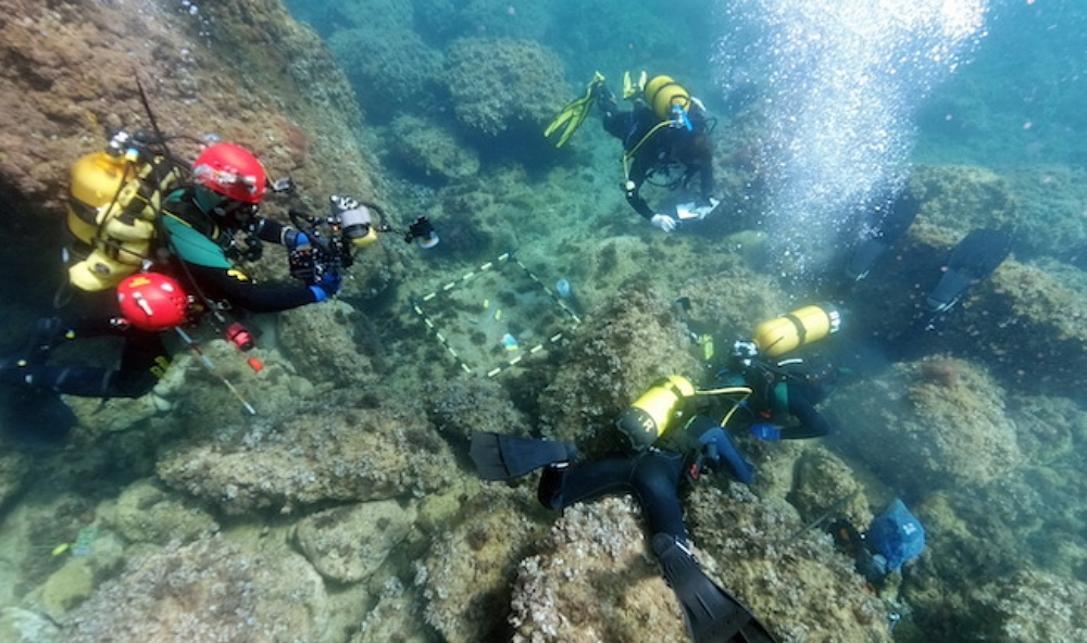 diving expedition off the coast of xabia