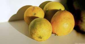 Lemons on Countertop